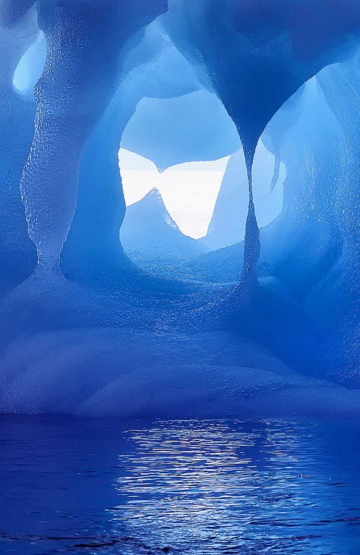 Откриха неизвестно ДНК в пещери из Антарктида
