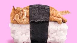 Котка и суши или уникалните колажи на Пол Фуентес