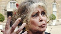83-годишната Бриджит Бардо постоянно е в центъра на скандала