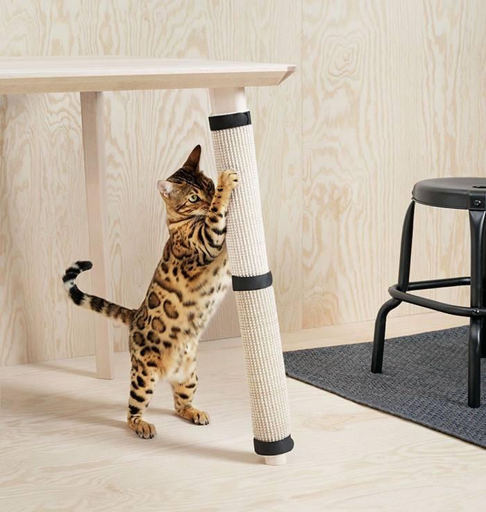 """Икеа"" пусна мебели за кучета и котки"
