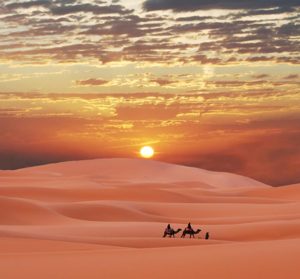 Норвежки еколози раззеленяват Сахара