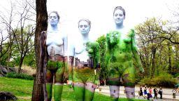 Моделите на художничка изчезват мистериозно на фона на пейзажа