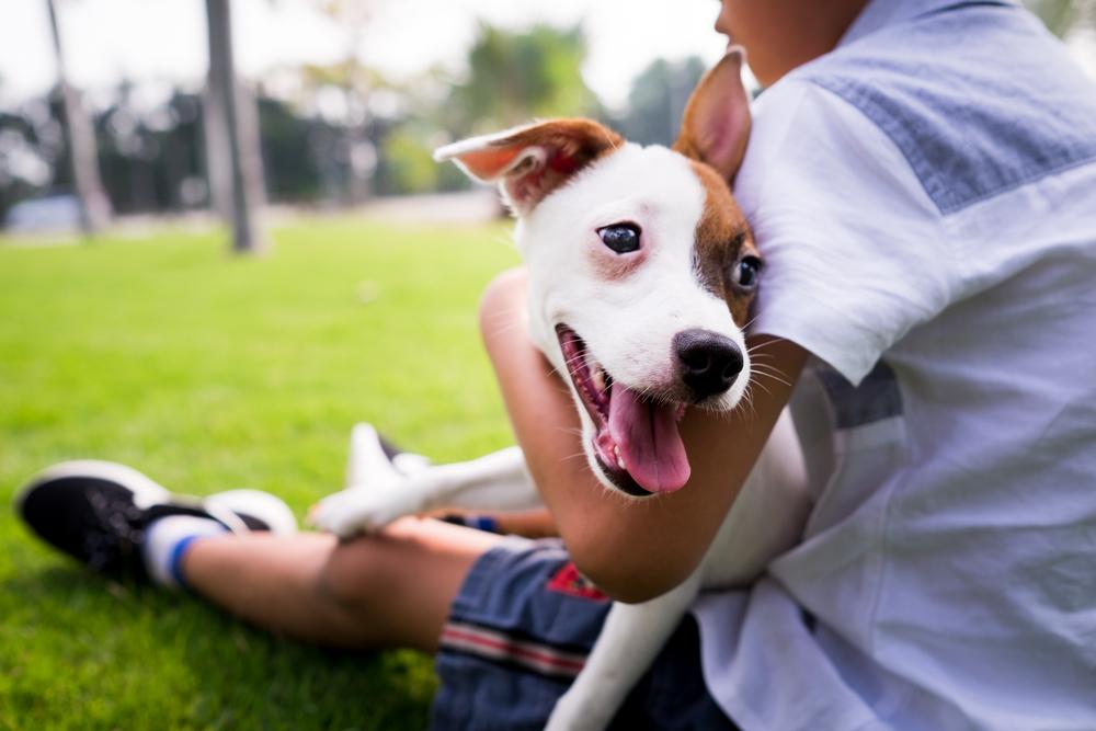 Хората обичат повече кучетата си, отколкото себеподобните