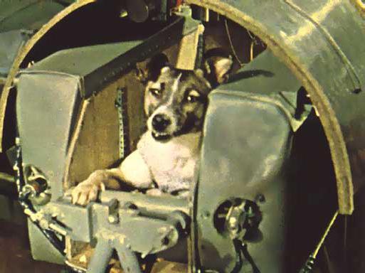 60 години от изстрелването на кучето Лайка