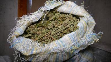 Хванаха двама мъже с 5 кг марихуана и кокаин в София