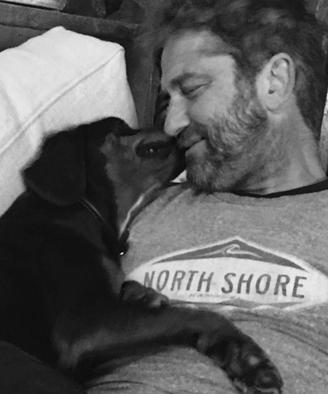 Джерард Бътлър си осинови бездомно кученце от България