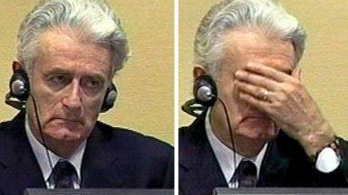Радован Караджич обжалва присъдата от 40 г. затвор