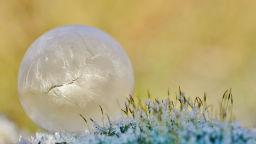 Вижте вълнуващите творения на зимата