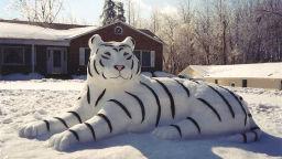 Какво можем да си измайсторим от сняг