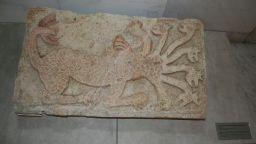 Уникална седемглава ламя с корони може да бъде видяна в НИМ