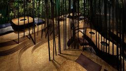 Сред тиха гора или шумна пещера - храненето е изкуство