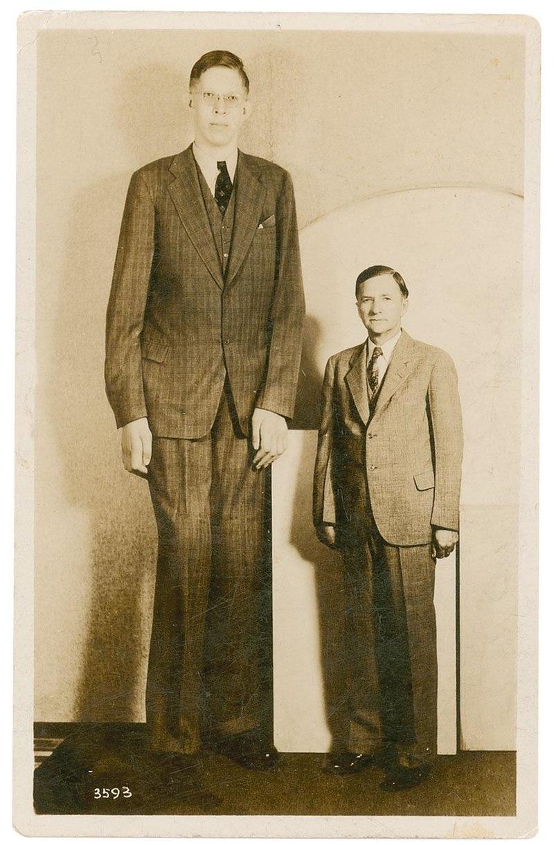 """""""Нежният гигант"""" или най-високият човек в света - 2,72 м"""
