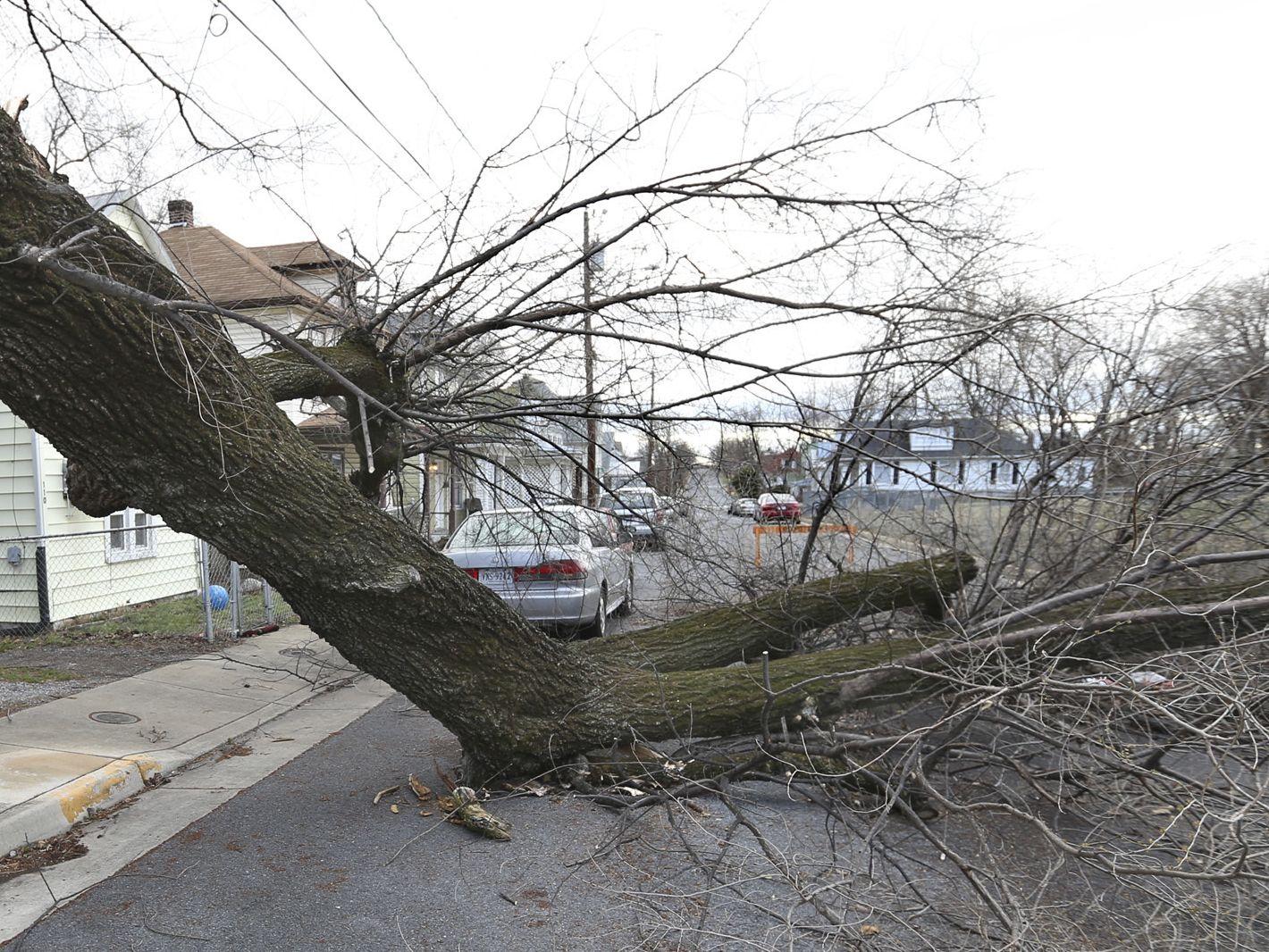 Холандия:100 млн. евро покриват щети от бурите през януари