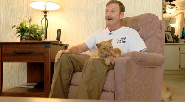 Стопанин откри котката си след 14 години