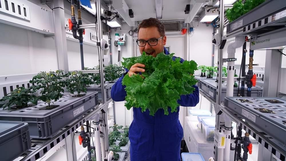 Първата зеленчукова реколта в Антарктида