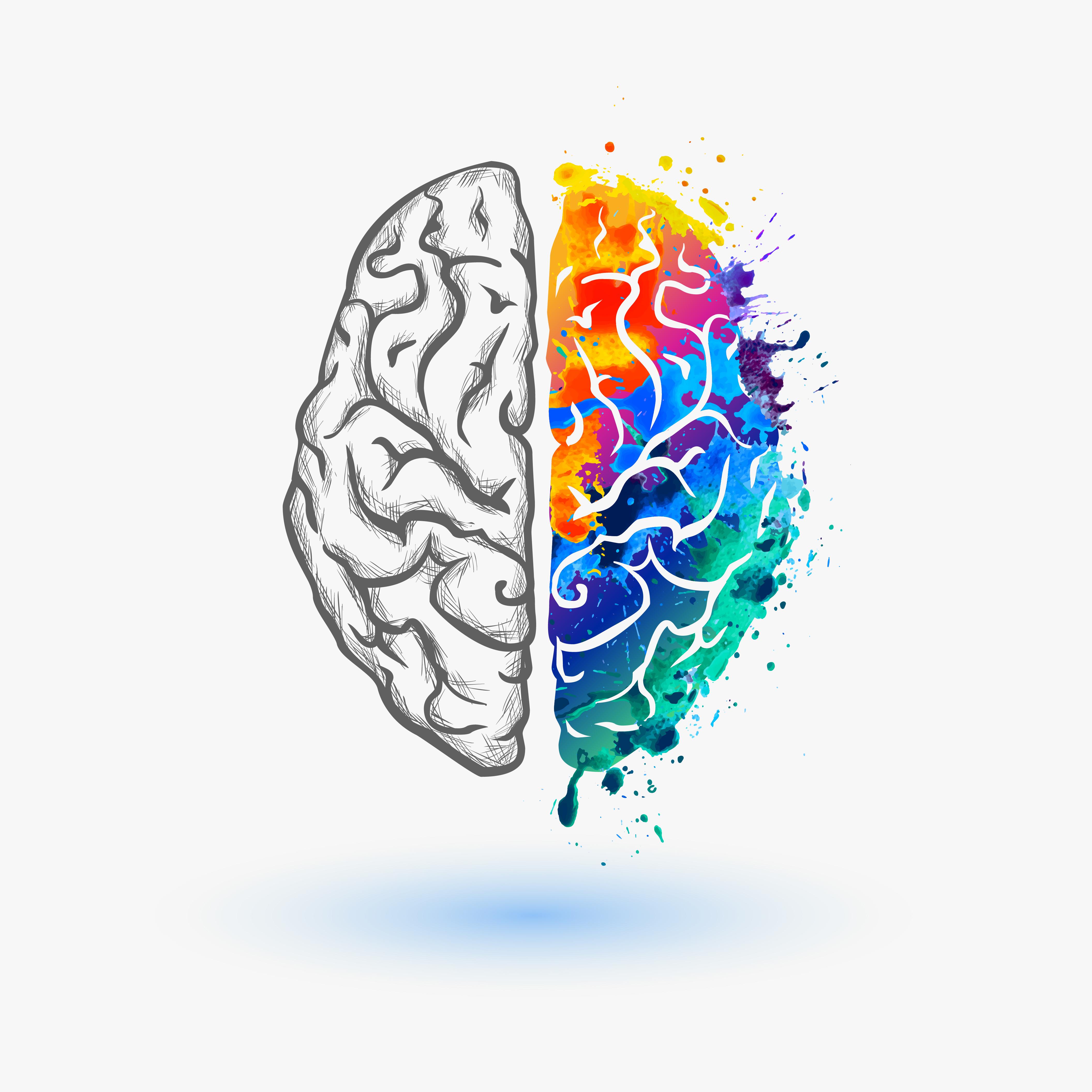 Човешкият мозък непрестанно се обновява