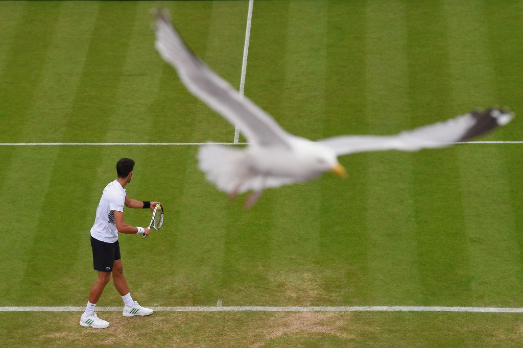 Край на досадното тупкане на топката в тениса