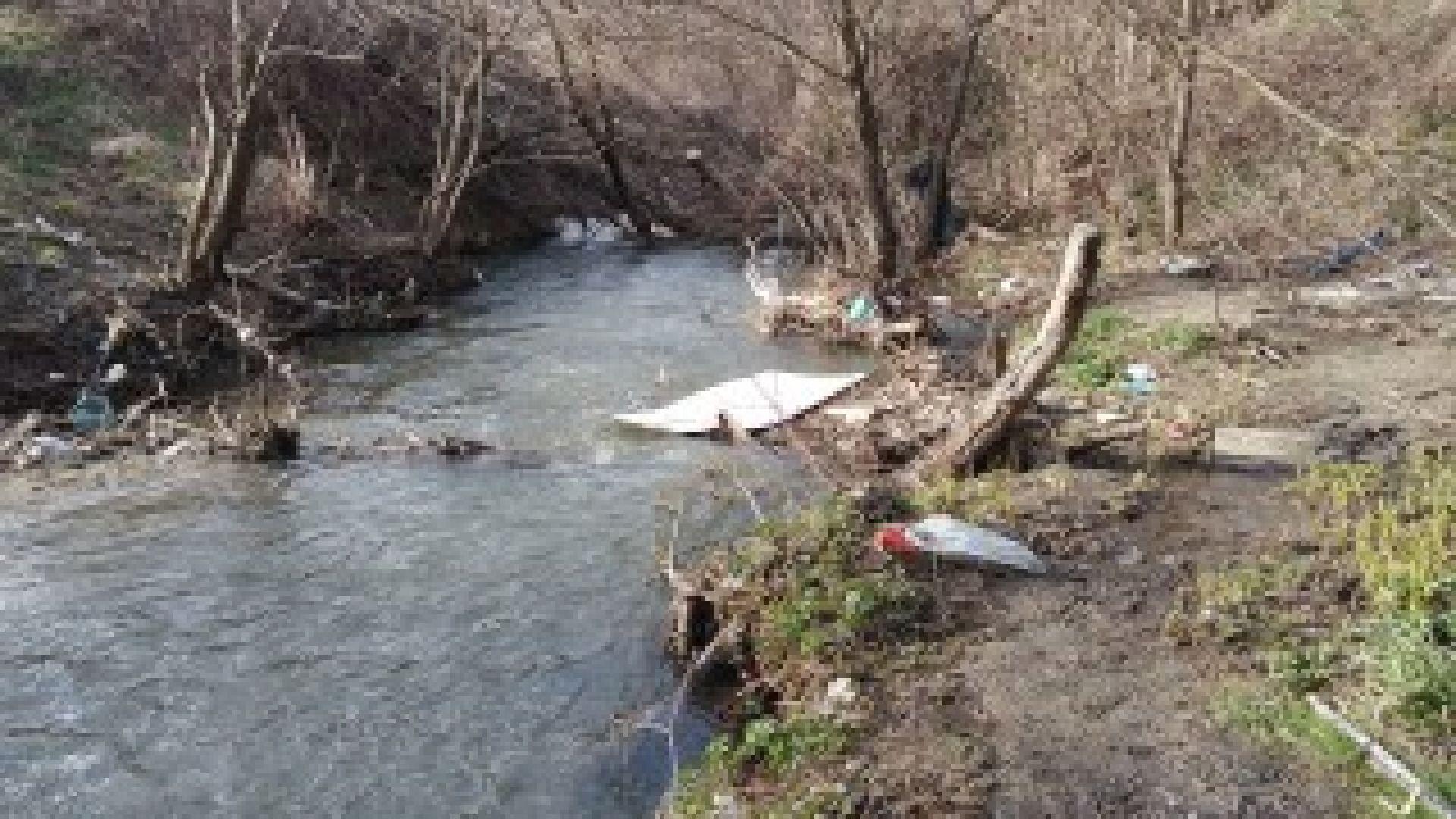 """Граждани организират почистване на парк """"Въртопо"""""""