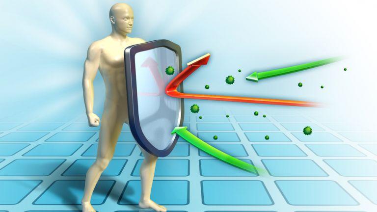 """Специалисти откриха """"тайното оръжие"""" на имунната система"""