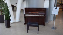 Третокласничка свири на пиано в автогара (видео)