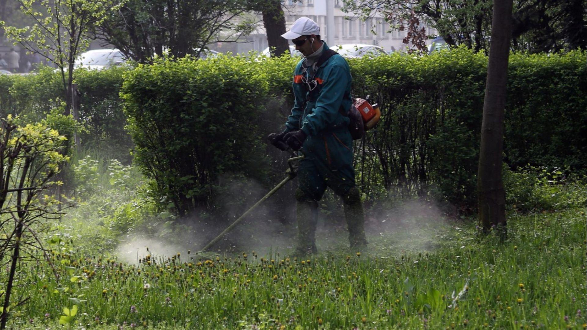 Градинките в София няма да се застрояват