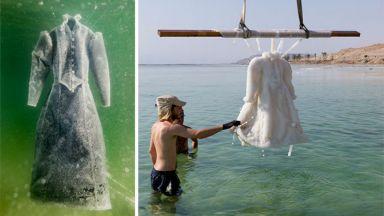 Траурна рокля се превръща в сватбена на дъното на морето