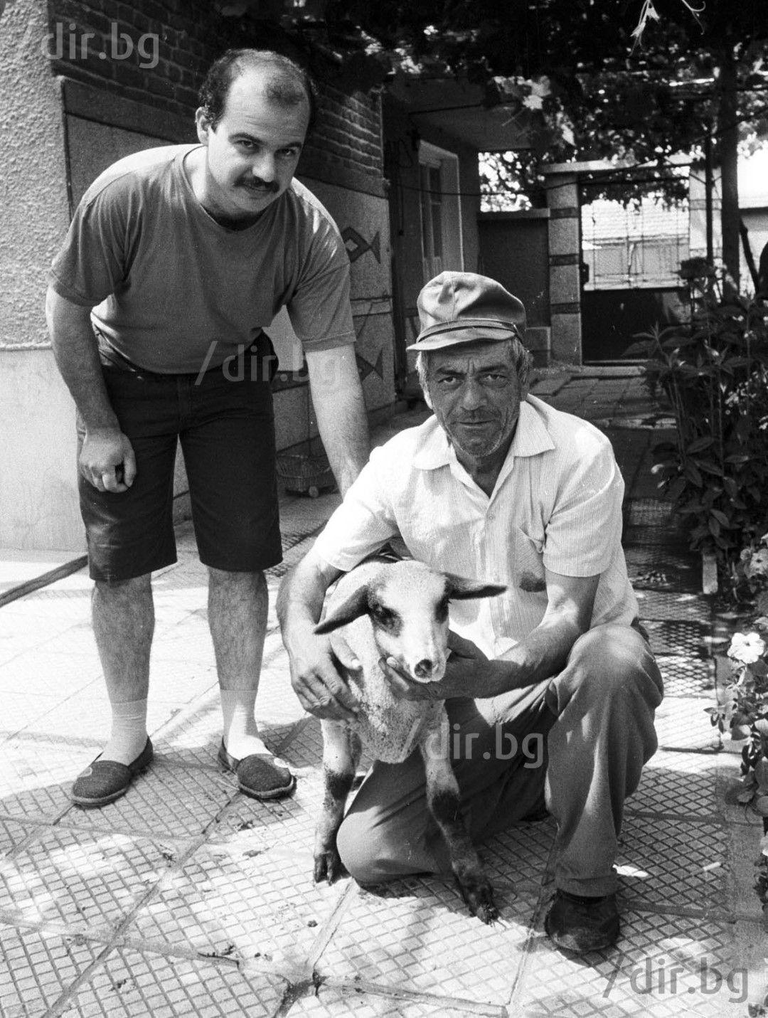 Зетят, вуйчото и агнето, което ще бъде жертвопринесено в чест на Модерния ляв. Снимка: Иван ГРИГОРОВ