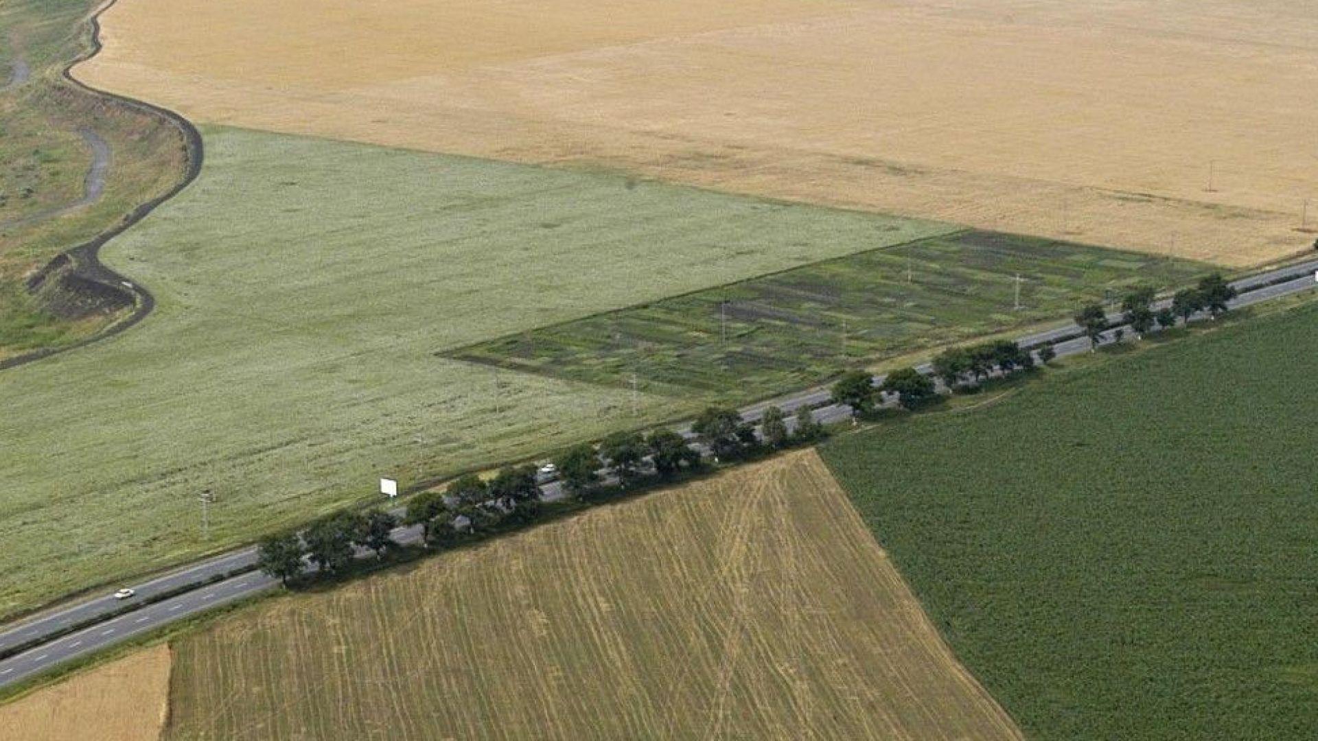 Пазарът на земеделска земя се активизира