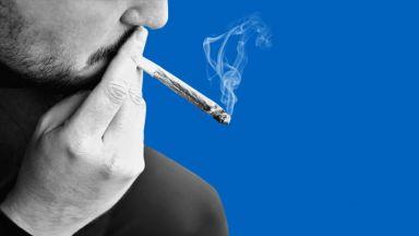 Да бъде ли декриминализирана употребата на марихуана?