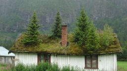 Скандинавски къщички с обрасли със зеленина покриви, в които ти се иска да заживееш