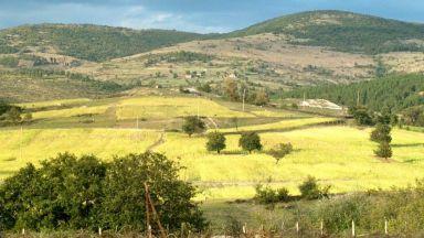 Земята в България поскъпна 4 пъти за 7 години