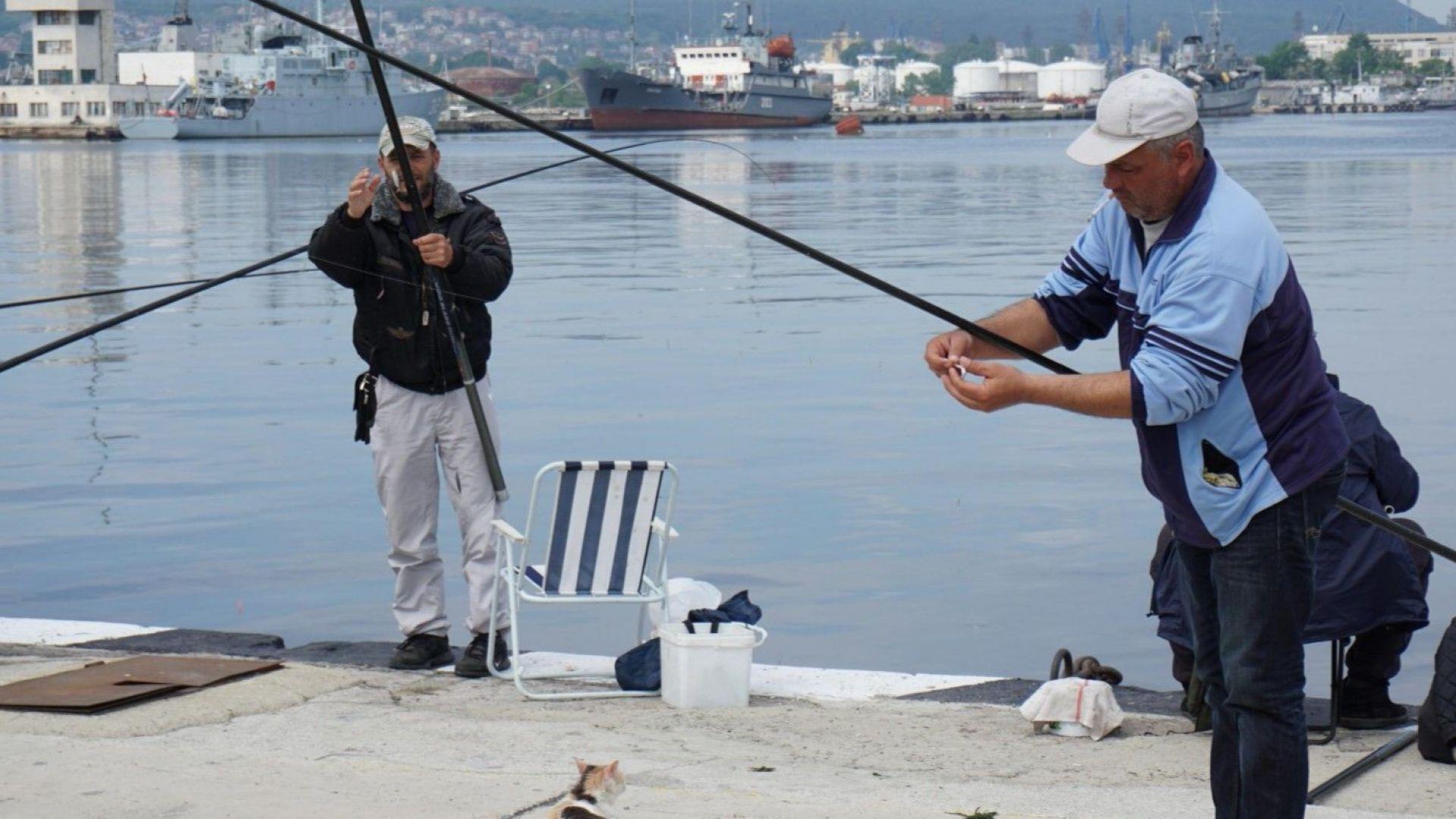 Ловиш риба без билет-глоба 15 000 лева