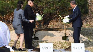 """Ким и Мун подписаха декларация за """"пълна денуклеаризация на Корейския полуостров"""""""