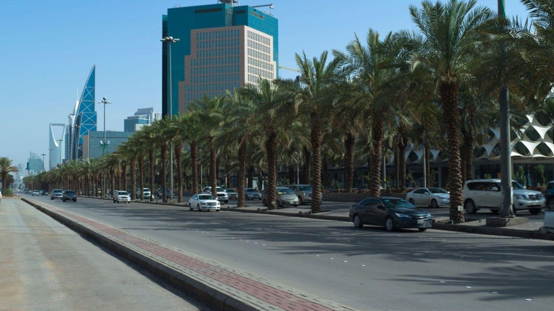 Саудитска Арабия с мегапроект в туристическия сектор