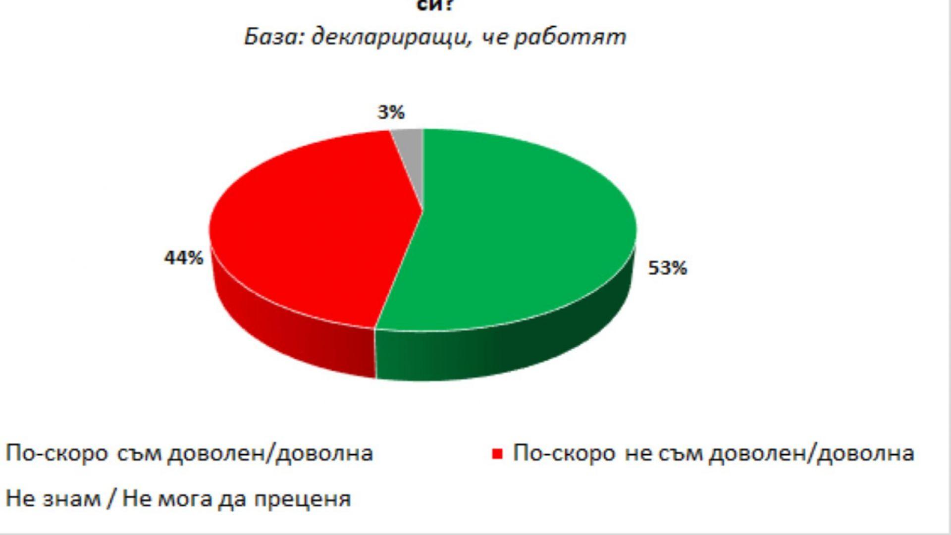 """""""Галъп"""": 43% от българите работят и са доволни"""