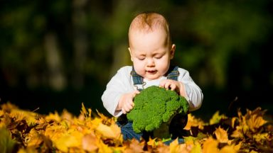 Диетолози препоръчват бебетата да бъдат захранвани с броколи и спанак