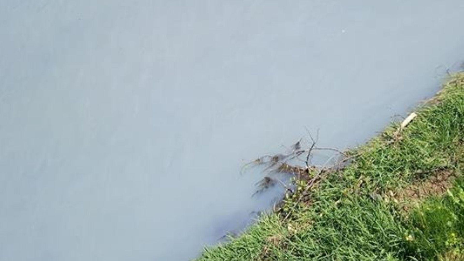 Река Ерма, в района на Трън, е замърсена