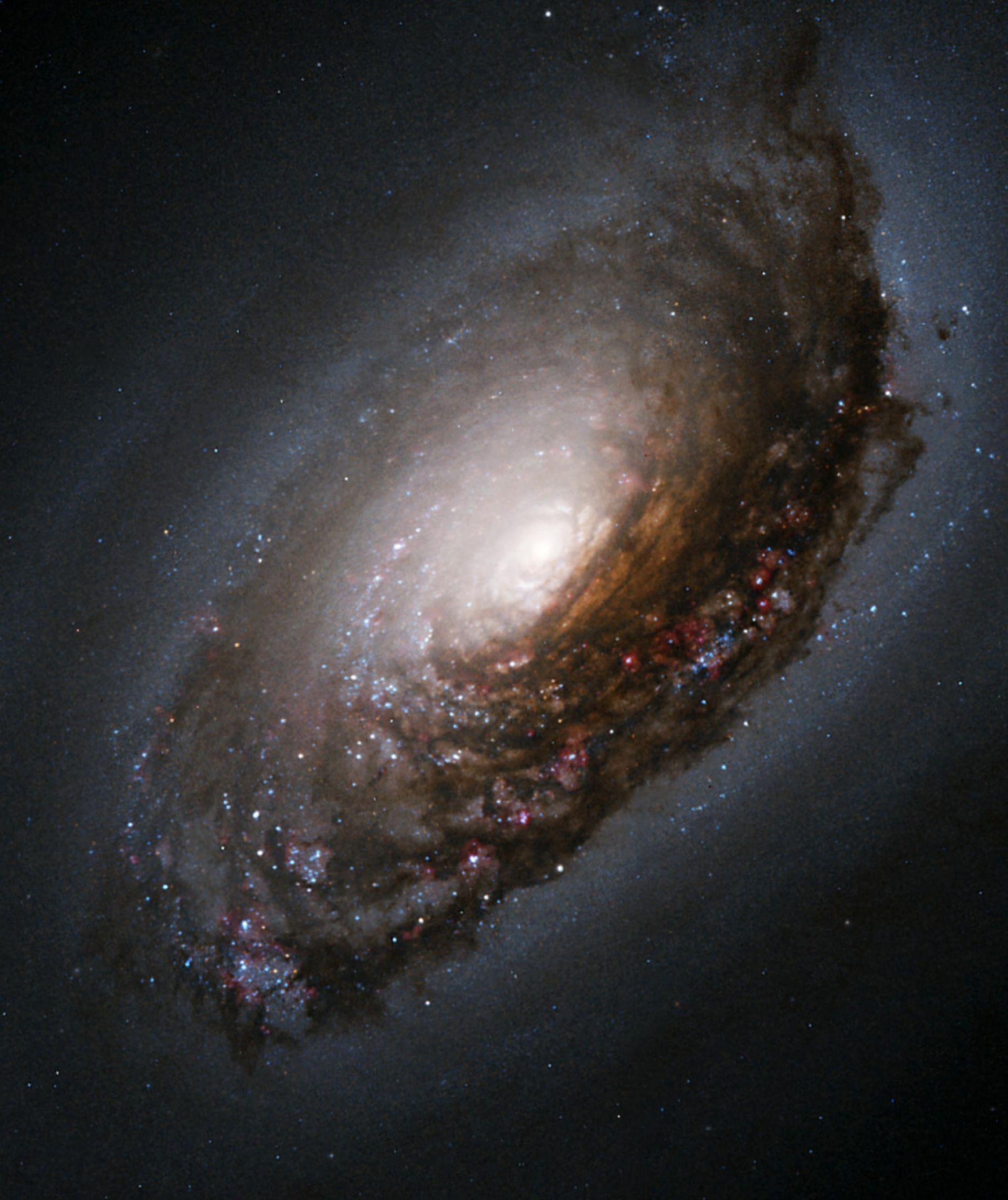 Галактиката Черното око