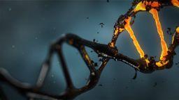 Генната терапия направи голяма крачка напред през 2019 г.