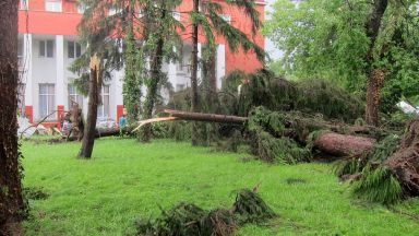 Буря и градушка пометоха Бяла Слатина и Плевен (снимки)