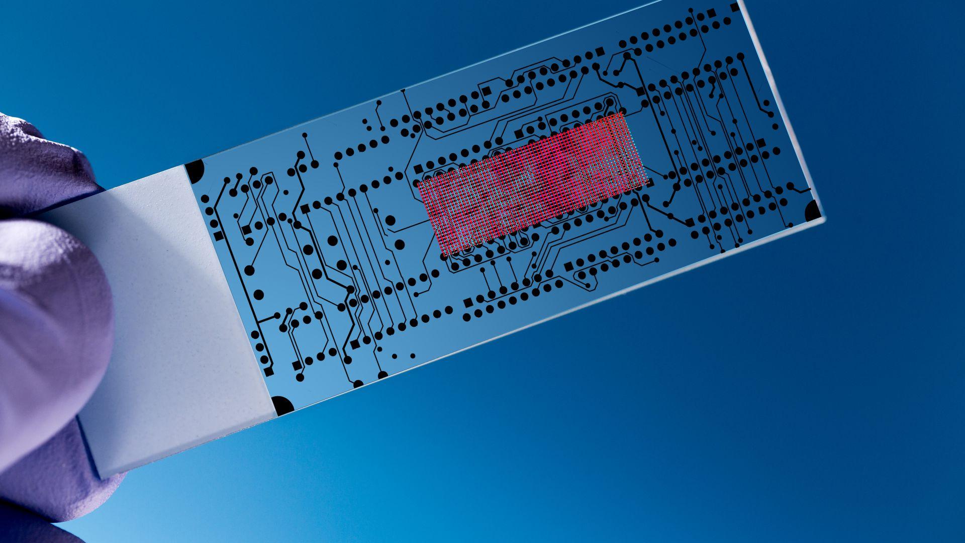 Учени конструираха чип,  който разпознава  наркоманите
