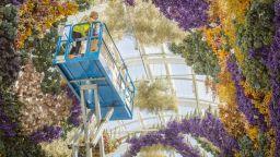 Флорални инсталации отвеждат зрителите във вълшебни светове