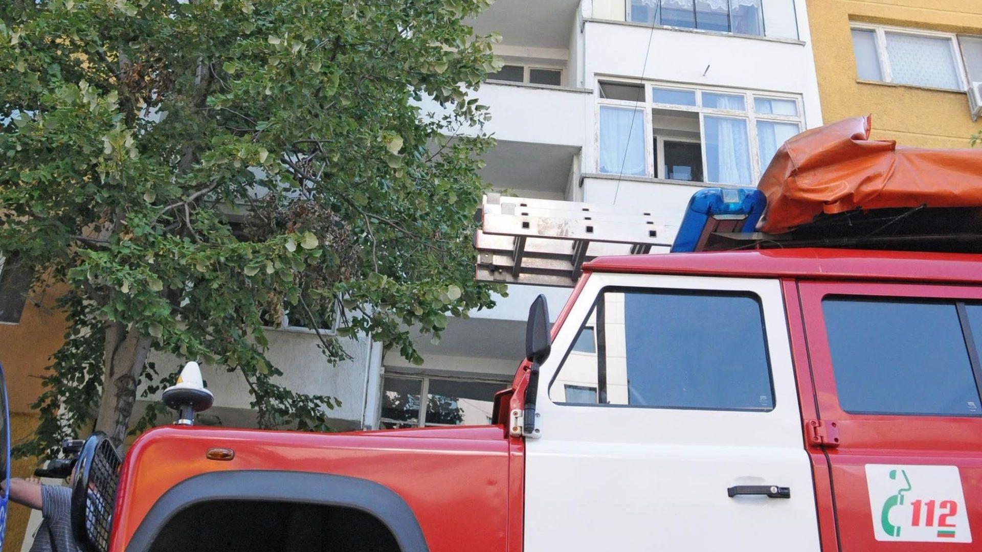 Огромно дърво падна върху кооперация в центъра на Пловдив
