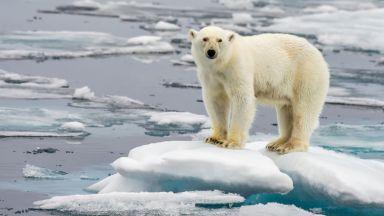 """Митовете за климата: """"Слънцето е виновно"""" (видео)"""