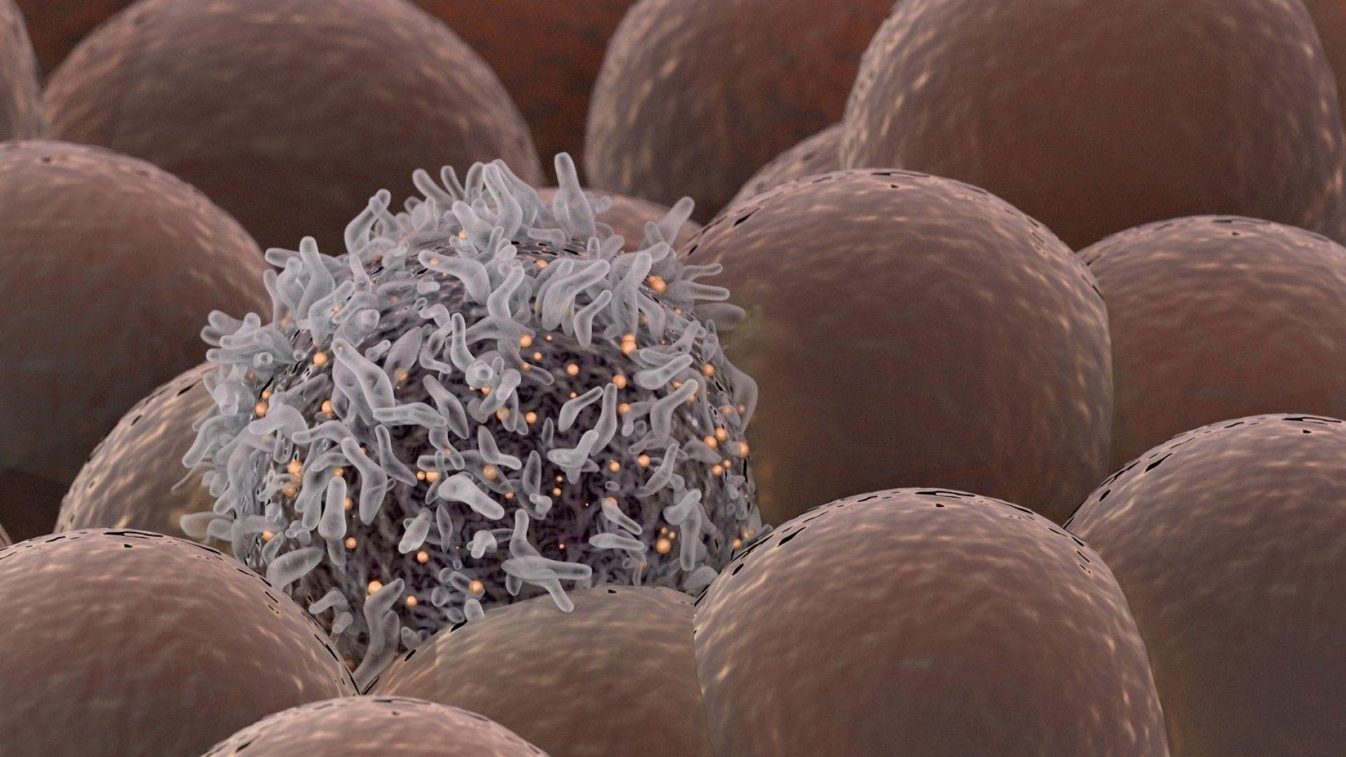 Учените за рака: Той е следствие от нашата дейност на планетата