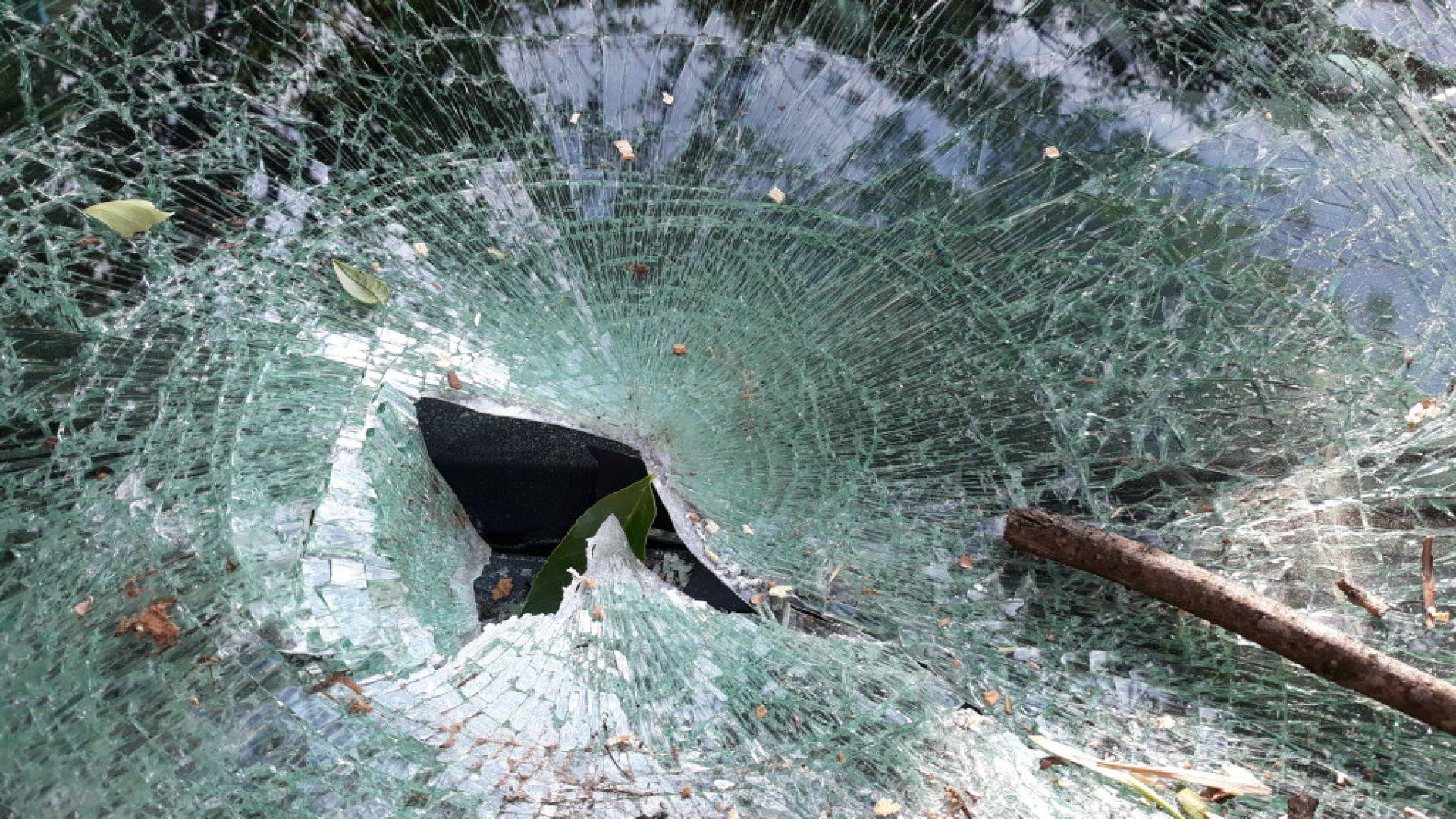 Пиян шофьор уби спътника си след удар в дърво
