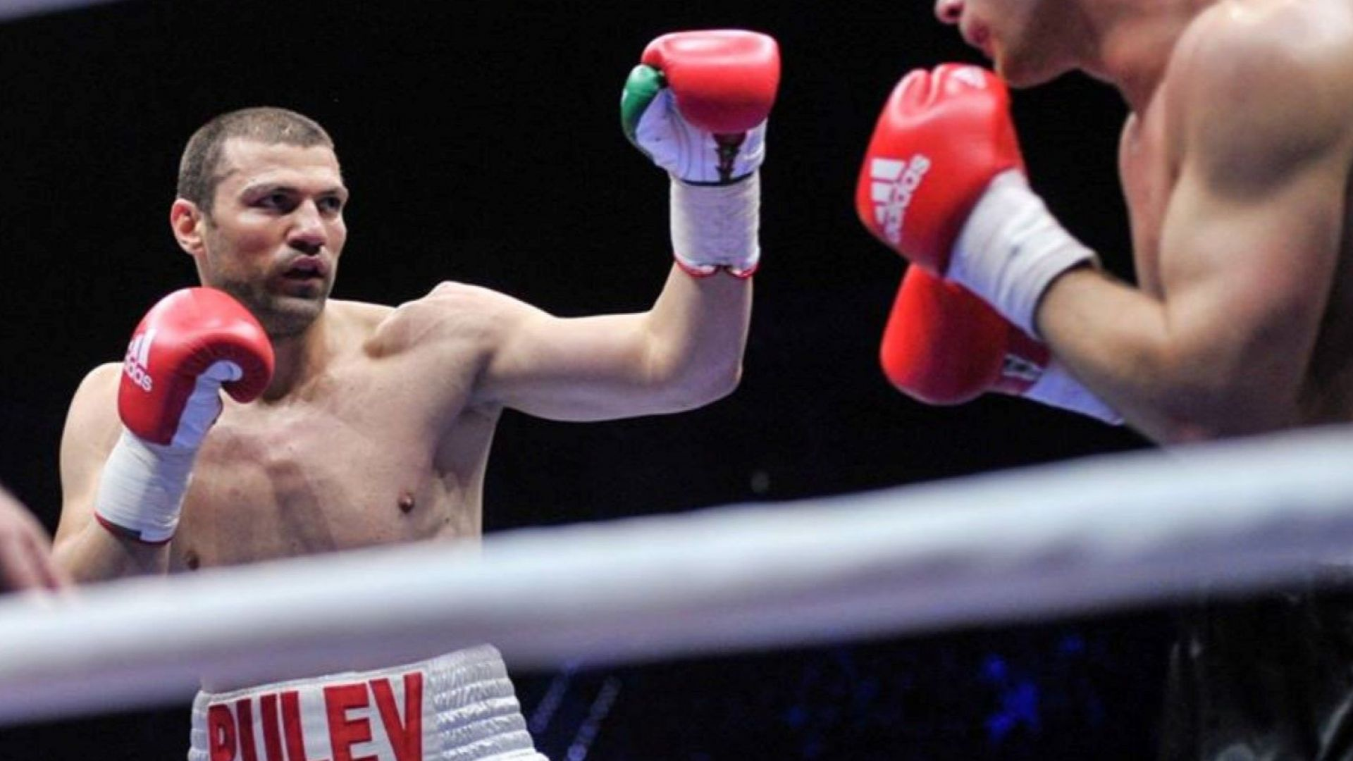 Италианец отказа да се бие с Тервел Пулев