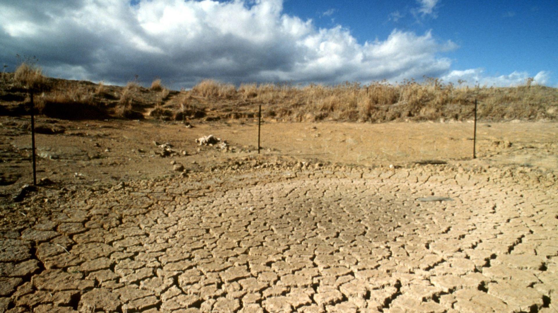 До края на века валежите ще намалеят драстично