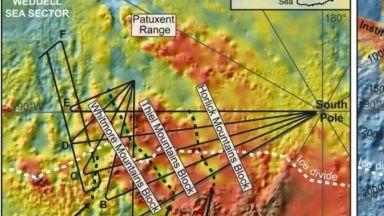 Учени откриха дъждовна гора на 90 млн.години в Антарктида