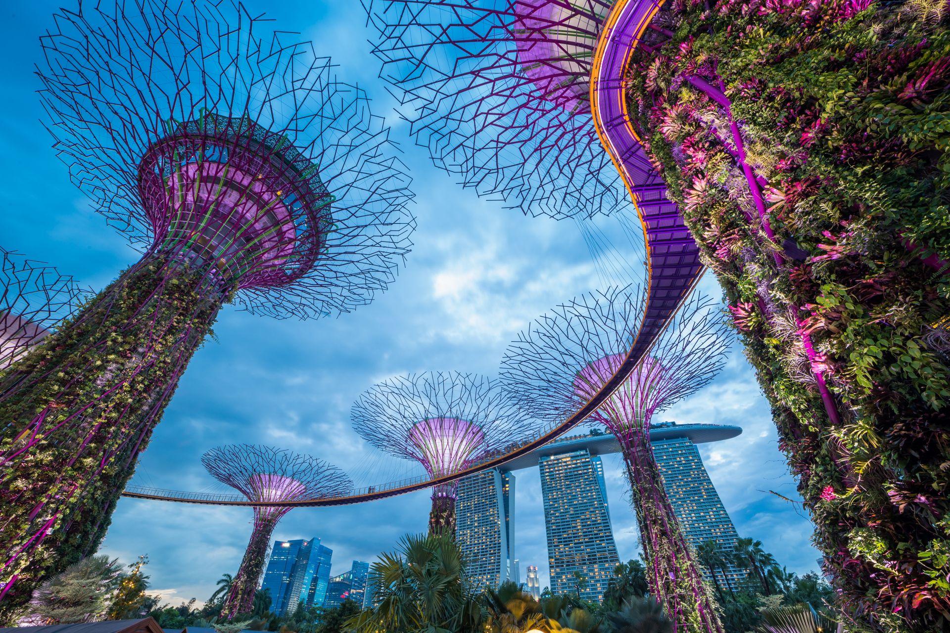 4. Сингапур е високоразвита страна с търговска икономика и ниски данъци, в която важна роля играят международните корпорации